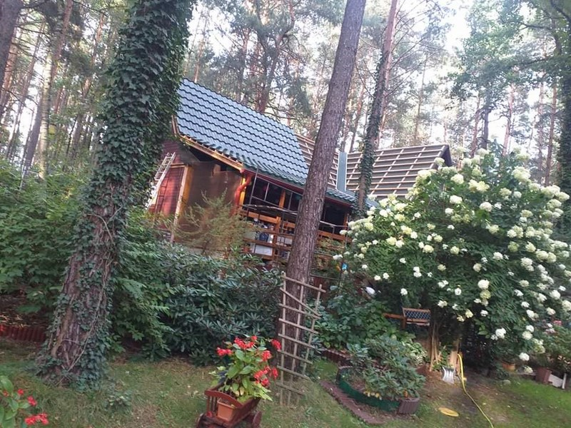 domek w lesie - germaniaa